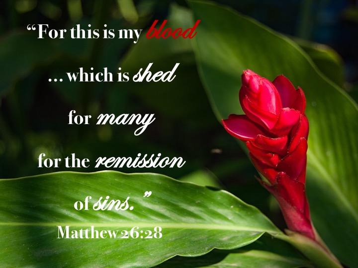 Matthew 26 28 English