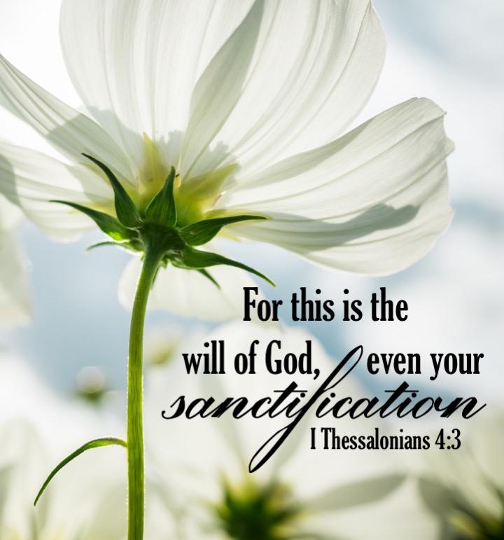 I Thessalonians 4 3 English