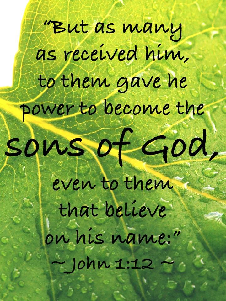 John 1-12 English