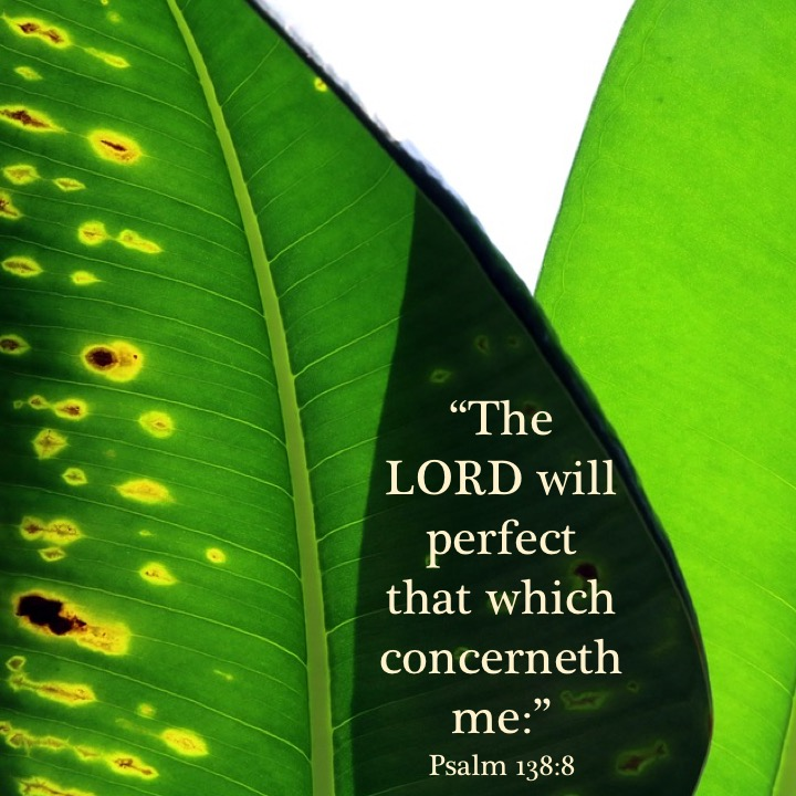 Psalm 138-8 English.jpg