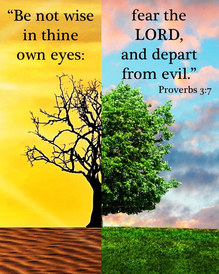 Proverbs 3 7 English.jpg