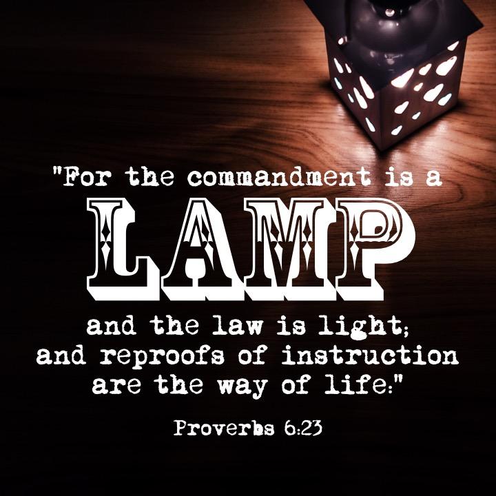 Proverbs 6 23 English