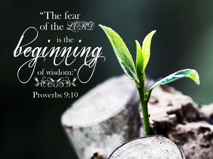 Proverbs 9 10 English