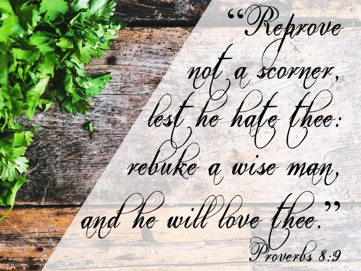 Proverbs 9 8 English.jpg