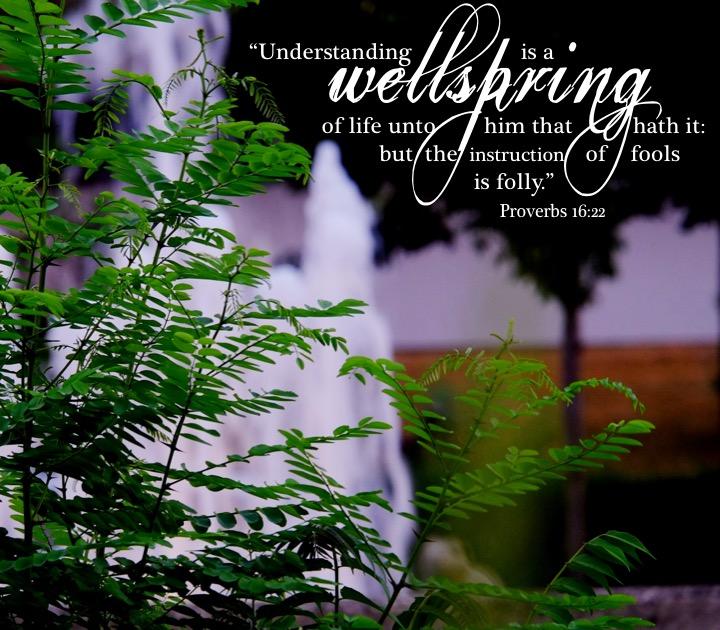 Proverbs 16 22 English