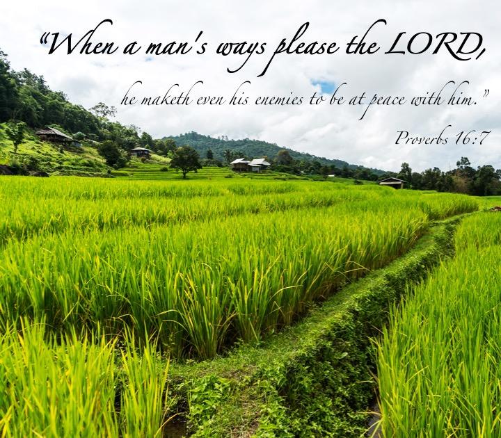 Proverbs 16 7 English
