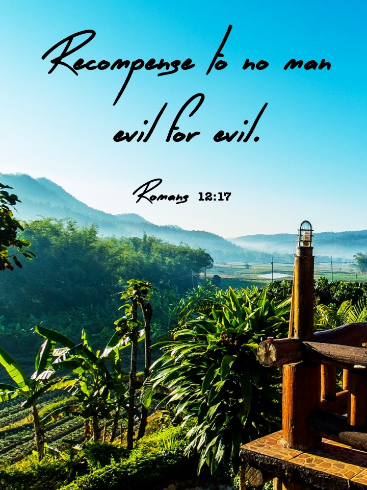 Romans 12 17 English