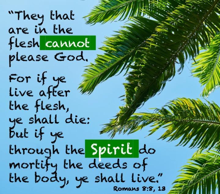 Romans 8 8, 13.jpg