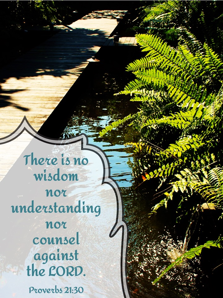 Proverbs 21 30.jpg