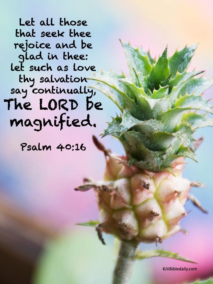 Psalm 40 16 KJV.jpg