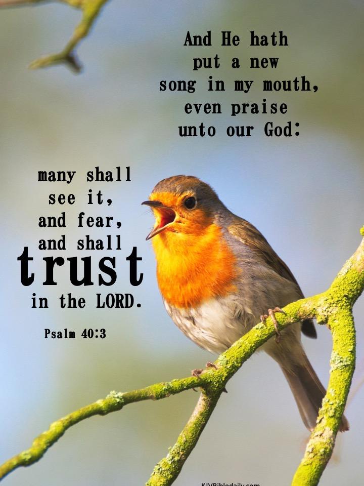 Psalm 40 3 KJV