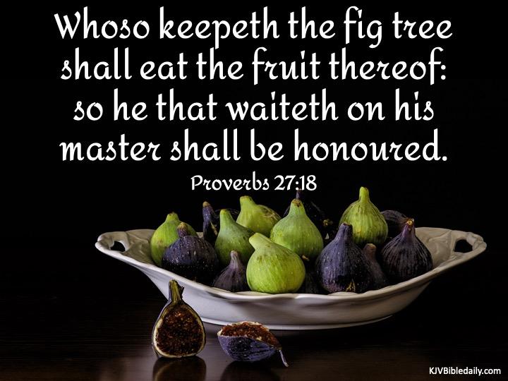 Proverbs 27 18 KJV.jpg