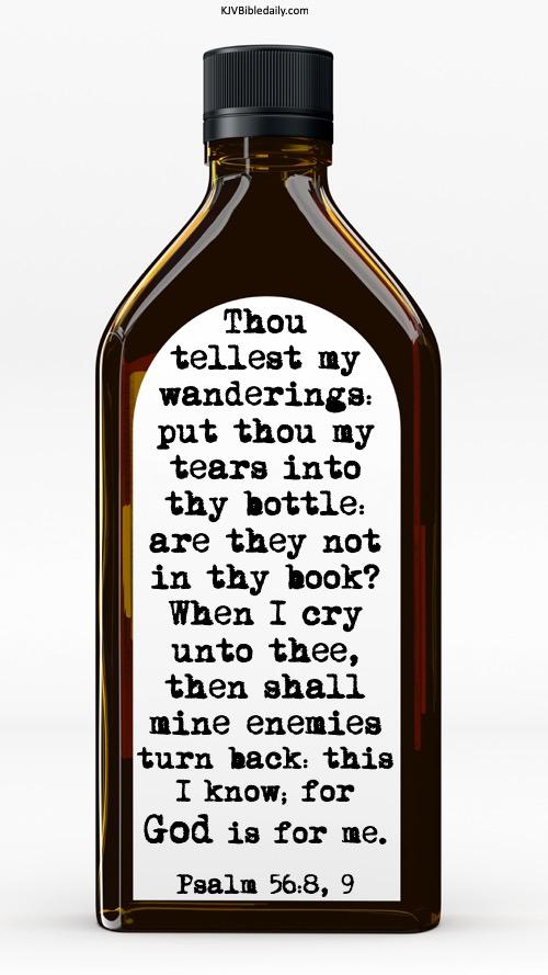 psalm 56 8, 9 kjv