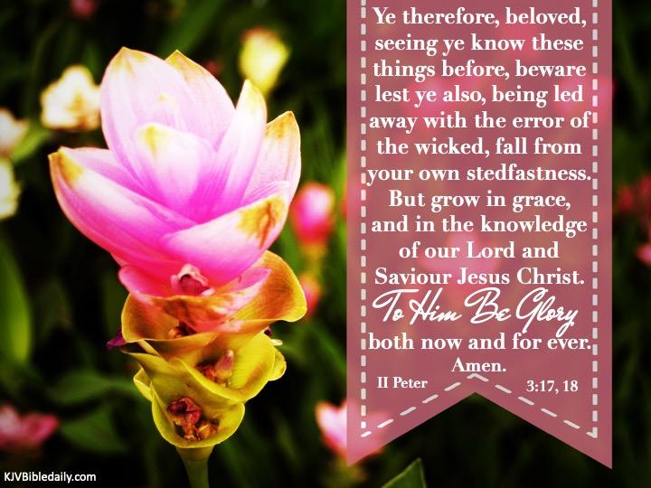 2 Peter 3-17, 18 KJV