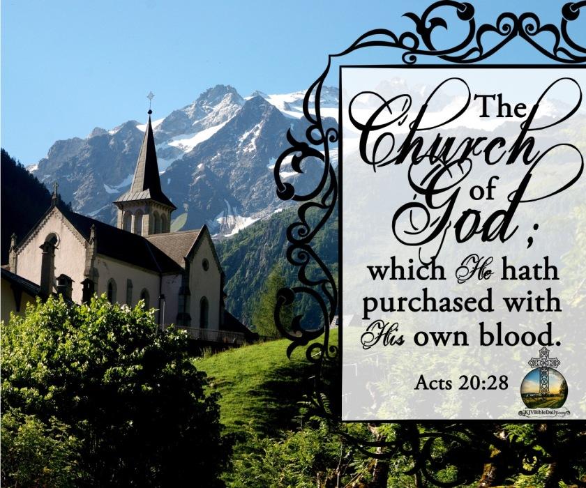 Acts 20.28 KJV.jpg
