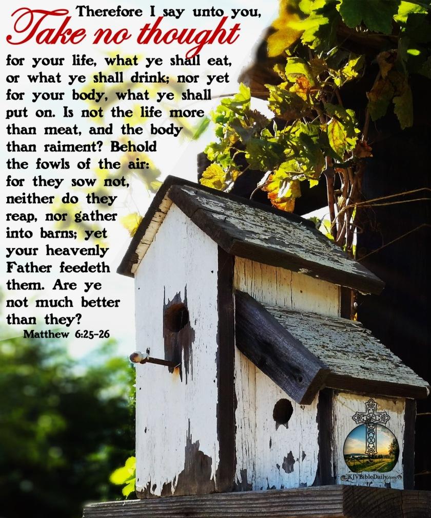 Matthew 6-25-26 KJV.jpg