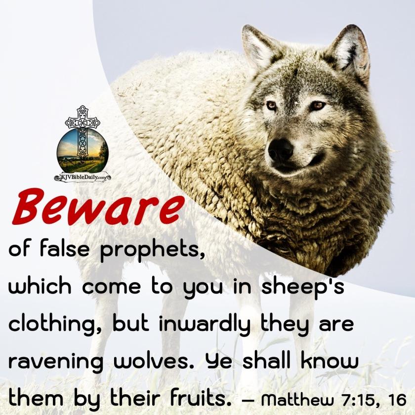 Matthew 7 15, 16 KJV