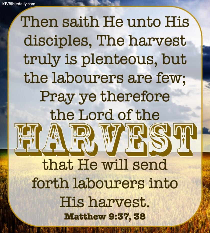 Matthew 9 37, 38 KJV