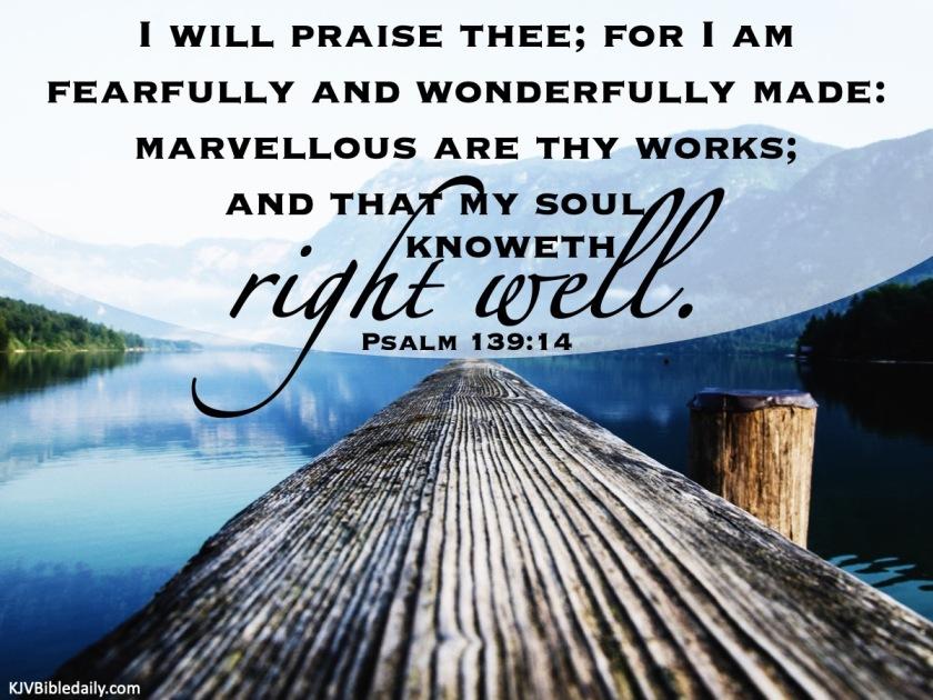 Psalm 139 14 KJV.jpg