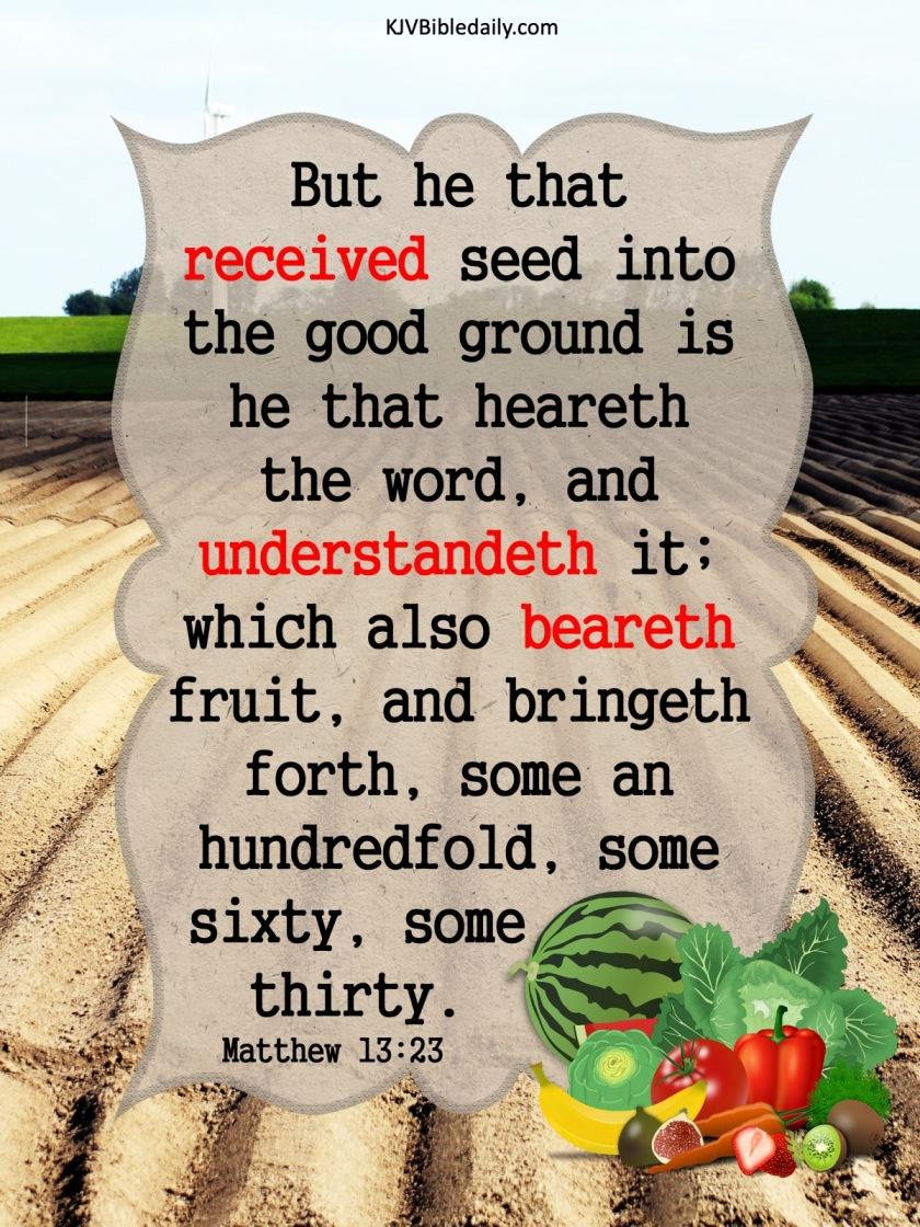 Matthew 13 23 KJV.jpg