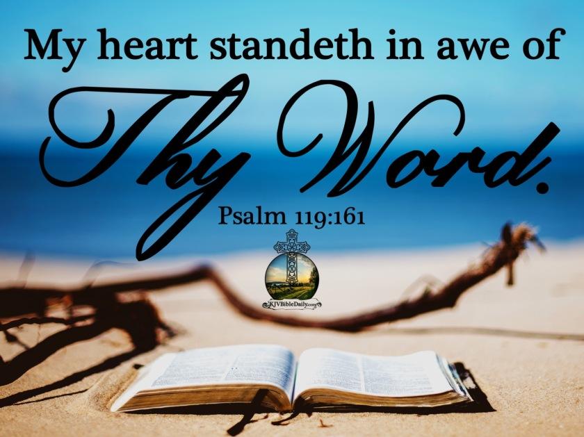 Psalm 119 161 KJV.jpg