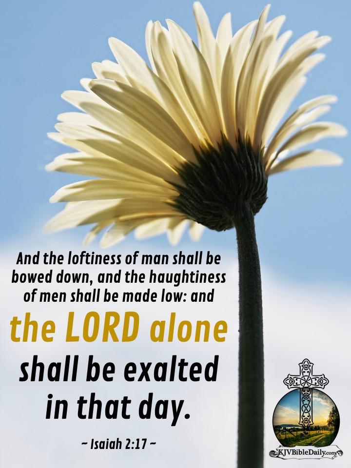 Isaiah 2-17 KJV