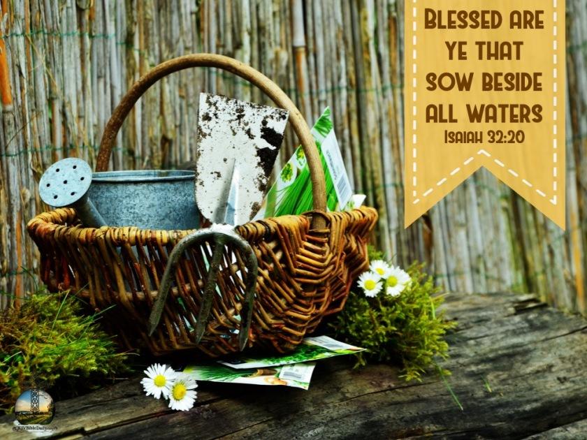 Isaiah 32-20 KJV.jpg