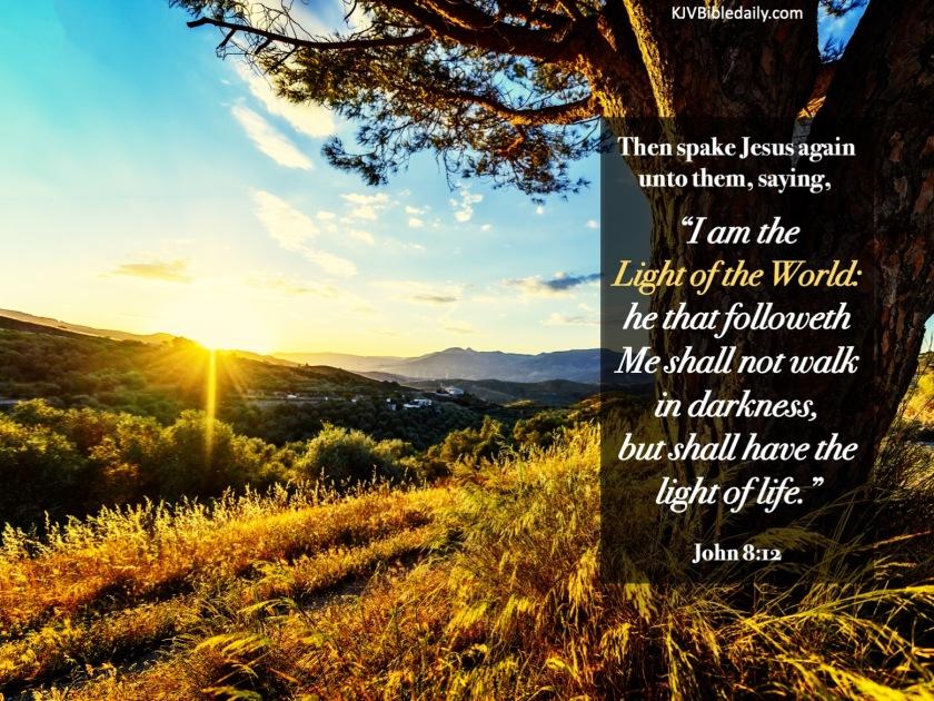 John 8-12 KJV.jpg