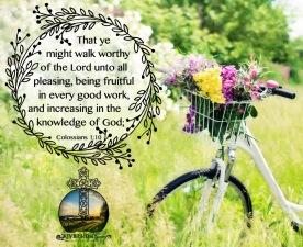 Colossians 1-10 KJV