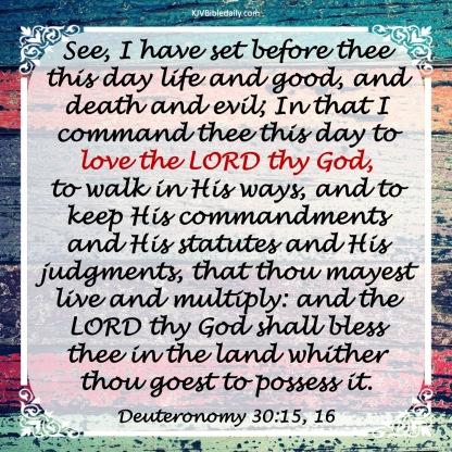 Deuteronomy 30-15, 16 KJV
