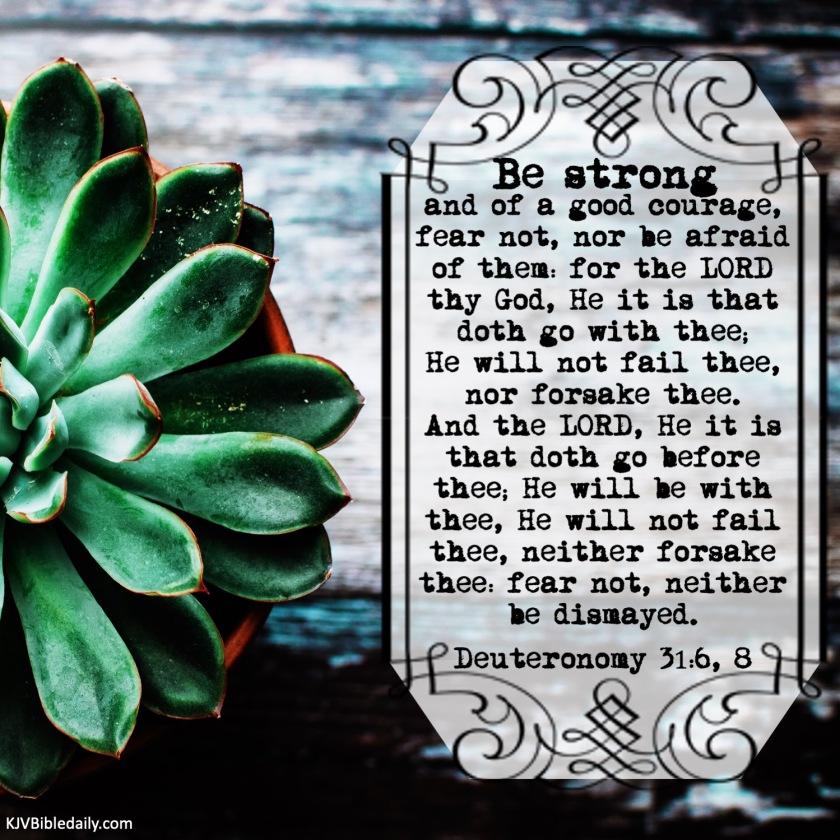 Deuteronomy 31-6-8, KJV