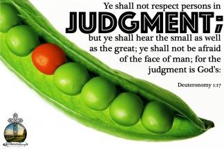 Deuteronomy 4.29 KJV