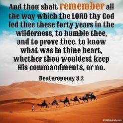 Deuteronomy 8-2 KJV