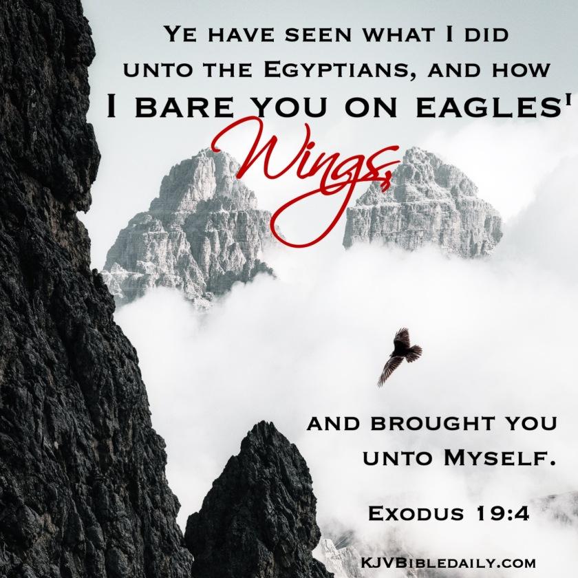 Exodus 19-4 KJV.jpg