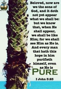 I John 3-2,3 KJV