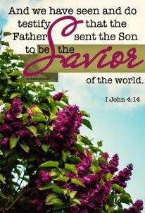 I John 4-14 KJV
