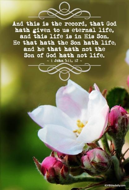 I John 5-11, 12 KJV