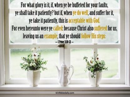 I Peter 2-20-21 KJV
