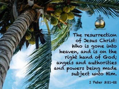 I Peter 3 22, 22 KJV