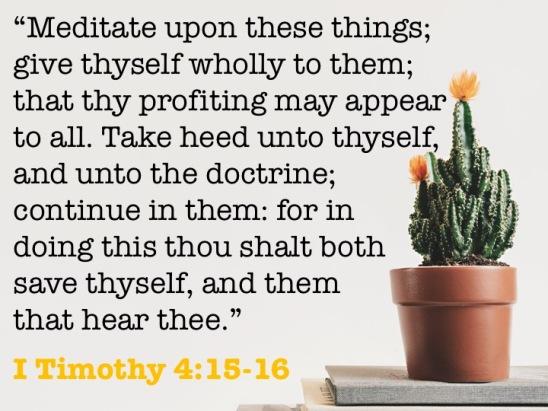 I Timothy 4.15-16 English