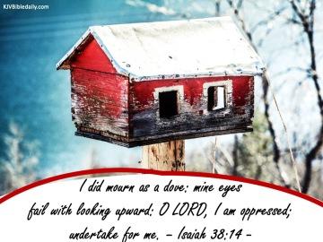 Isaiah 38-14 KJV