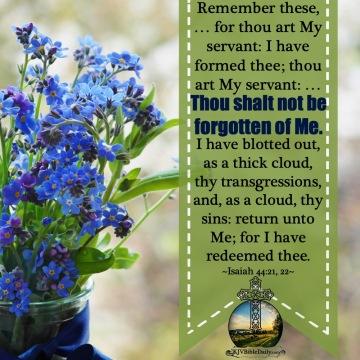 Isaiah 44-21, 22 KJV