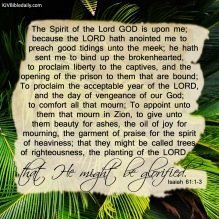 Isaiah 61-1-3 KJV