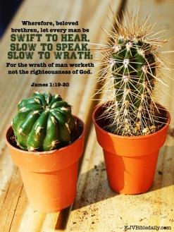 James 1 19-20 KJV