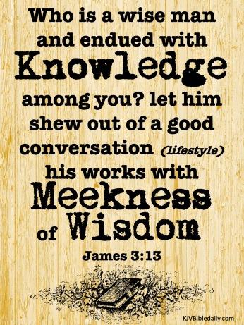 James 3 13 KJV