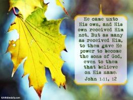 John 1 11, 12 KJV