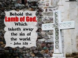 John 1-29 KJV