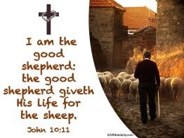 John 10-11 KJV