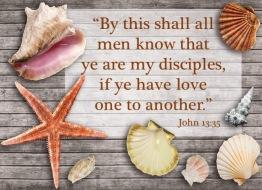 John 13 35 English