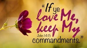 John 14.15 English